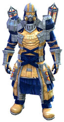 Forgeman armor (light) norn male front.jpg