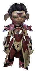 Guild Watchman armor asura male front.jpg
