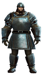 Heavy Scale armor norn male front.jpg