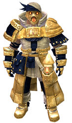 Forgeman armor (medium) norn male front.jpg
