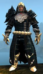 Refined Envoy armor (medium) norn male front.jpg