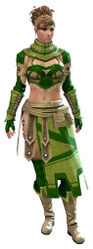 Vigil's Honor armor (light) norn female front.jpg
