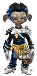 Carapace armor (light) asura male front.jpg