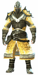 Emblazoned armor norn male front.jpg