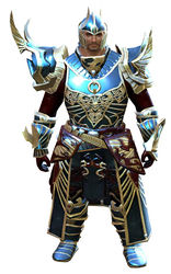 Carapace armor (heavy) norn male front.jpg