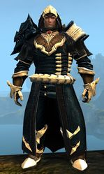 Experimental Envoy armor (medium) norn male front.jpg