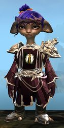 Ornate Guild armor (light) asura female front.jpg