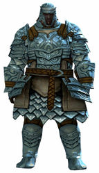 Banded armor norn male front.jpg
