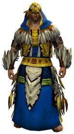 Raven Ceremonial armor norn male front.jpg