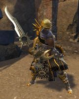 First Spear Kitur in armor.jpg