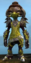 Triumphant Hero's armor (medium) asura female front.jpg
