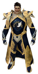 Guild Watchman armor norn male front.jpg
