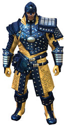 Ascalonian Sentry armor norn male front.jpg