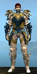 Triumphant Hero's armor (medium) human male front.jpg
