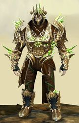 Blossoming Mist Shard armor (medium) norn male front.jpg