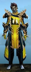 Ornate Guild armor (medium) sylvari male front.jpg