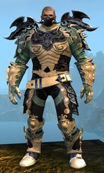 Triumphant Hero's armor (medium) norn male front.jpg
