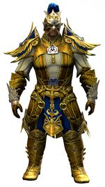 Triumphant Hero's armor (light) norn male front.jpg