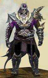 Funerary armor (medium) norn male front.jpg
