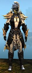 Triumphant Hero's armor (light) sylvari male front.jpg