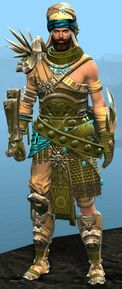 Spearmarshal's armor (heavy) human male front.jpg