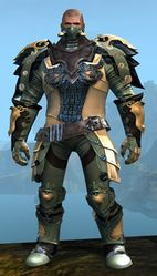 Triumphant armor (medium) norn male front.jpg
