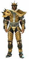 Heritage armor (heavy) human male front.jpg