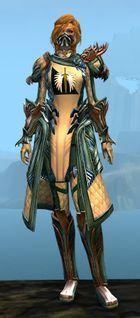 ornate guild vestments