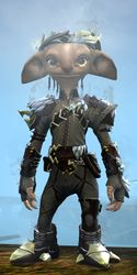 Requiem armor (light) asura male front.jpg