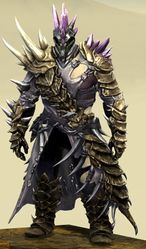 Bounty Hunter's armor (medium) norn male front.jpg