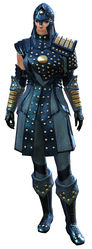Ascalonian Sentry armor norn female front.jpg