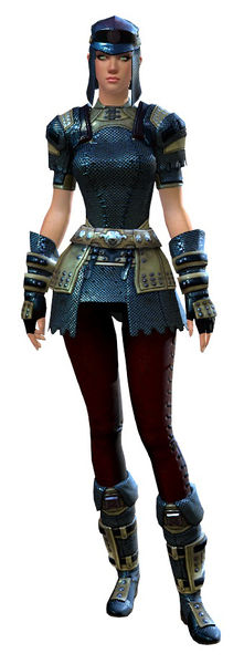 File:Chainmail armor human female front.jpg