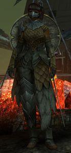 Marjory's Helper Dee - Guild Wars 2 Wiki (GW2W)