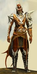 Funerary armor (medium) sylvari male front.jpg