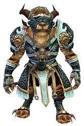 Magus armor charr male front.jpg
