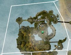 Overgrown Fane map.jpg