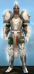 Radiant armor (heavy) human male front.jpg
