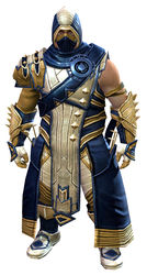 Inquest armor (medium) norn male front.jpg
