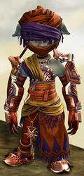 Elonian armor (medium) asura male front.jpg