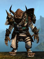 Leystone armor (medium) charr male front.jpg