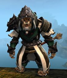 Experimental Envoy armor (medium) charr male front.jpg