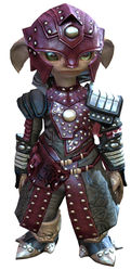 Ascalonian Sentry armor asura male front.jpg