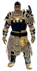 Vigil's Honor armor (medium) norn male front.jpg