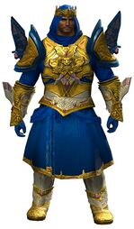 Ardent Glorious armor (light) norn male front.jpg
