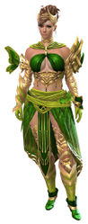 Carapace armor (light) norn female front.jpg