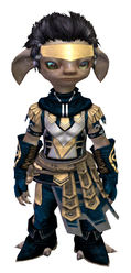 Vigil's Honor armor (light) asura male front.jpg