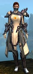 Ornate Guild armor (medium) norn female front.jpg