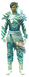 Luminescent armor (light) sylvari male front.jpg