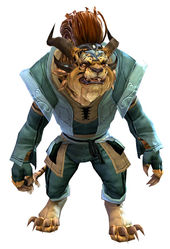 Country armor charr male front.jpg