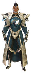 Guild Watchman armor human male front.jpg